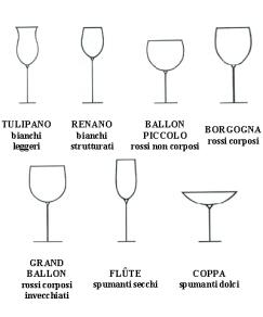 Il vino i vari tipi di bicchiere for Bicchieri tulipano